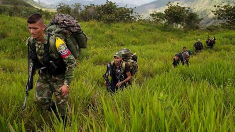 Las Farc mantienen su influencia en zonas cocaleras de Colombia: DEA