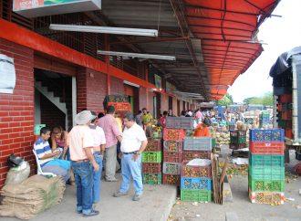 Surabastos con gran variedad de productos de agricultores huilenses