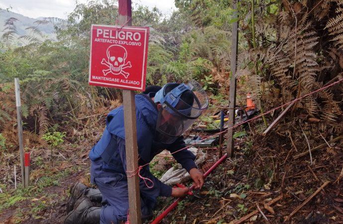 Desminado destruyó 13 artefactos explosivos cerca de viviendas y escuelas rurales en el Huila