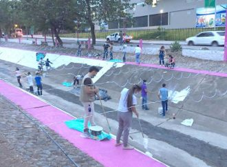 Diálogo   Ornato y embellecimiento de la Avenida La Toma en Neiva